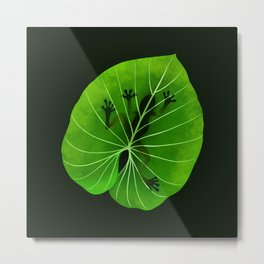 Tropical Frog On A Leaf Metal Print