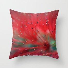 Callistemon macro 2413 Throw Pillow