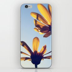 Spring Comes iPhone & iPod Skin
