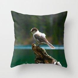 Grey Jay at Joffre Lakes Throw Pillow