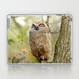 Sleeping in the Rain Laptop & iPad Skin