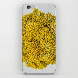 curry flowers II iPhone Skin