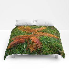 Dried Fern Comforters
