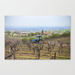 Tractor and Vineyard Canvas Print