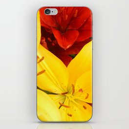 """""""A Gathering of Lilies"""" - 1 [D4465~12] iPhone Skin"""