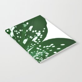 Lily Infrared In Green Notebook