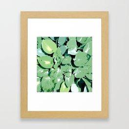 Hosta 01 Framed Art Print