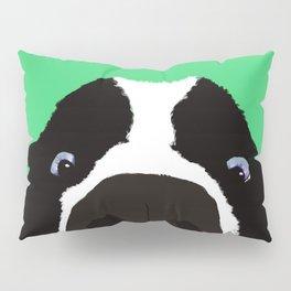 Begging Border Collie Pillow Sham
