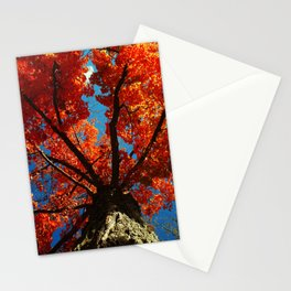 Trees on Fire Stationery Cards