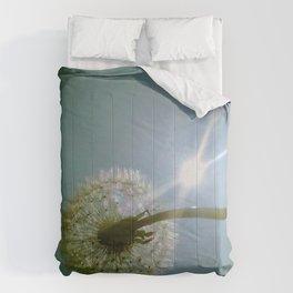 Make a wish! Comforters
