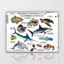 Marine Animals of the Caribbean Ocean Laptop & iPad Skin