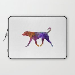 Transylvanian Hound in watercolor Laptop Sleeve