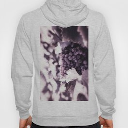 Grapes into Wine Hoody