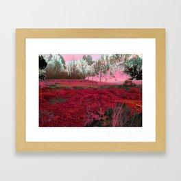 Untitled.50 CottonCandySeries  Framed Art Print