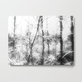 Spook in the Snow Metal Print