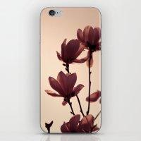 mulan iPhone & iPod Skins featuring Mulan by SUNLIGHT STUDIOS  Monika Strigel