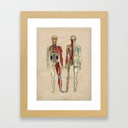 Human Artery Anatomy 1841 Print Framed Art Print
