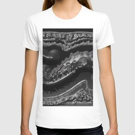 Thе Fossilized T-shirt