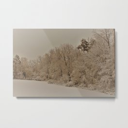 Snowy White with Zeke Filter Metal Print