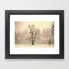 Yosemite Lonely Tree Framed Art Print