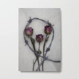 Three dried Roses II Metal Print