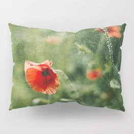Red Poppy on Green background with bokeh Pillow Sham