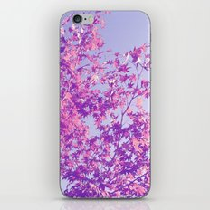 Autumnal Things iPhone & iPod Skin