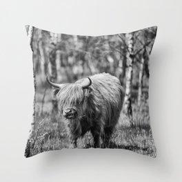Scottish highlander cow! Throw Pillow