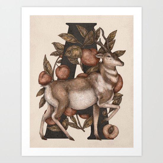 Letter A: Antelope & Apricots Art Print