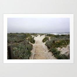 Asilomar Sand Dunes Art Print