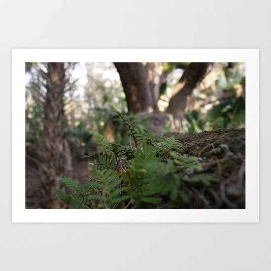 Tree Shrubs Art Print