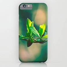 Spring Beauty iPhone 6s Slim Case