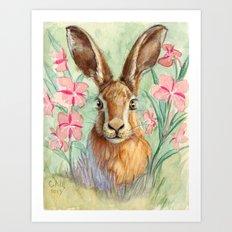 Bunny and Fireweed A089 Art Print