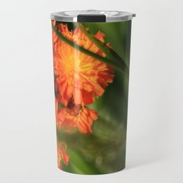 Orange Hawkweed Wildflowers Travel Mug