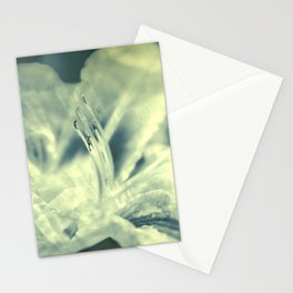 Mystic lily Stationery Cards