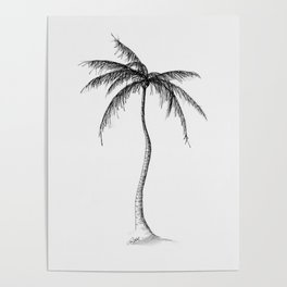 Palm Tree, Illustration Poster