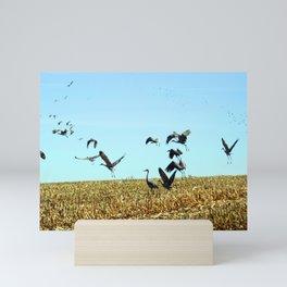 Stand Alone-Sandhill Cranes Mini Art Print