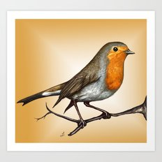 Robin bird Art Print