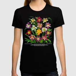 Display of daylilies II T-shirt