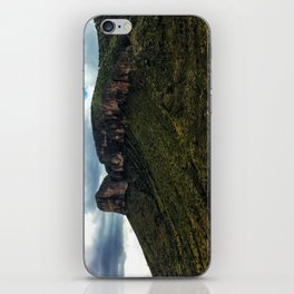 Painted Southern Arizona Greenery iPhone Skin
