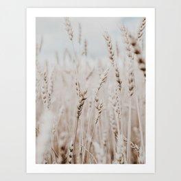 wheat. Art Print