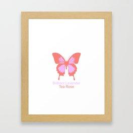Ulysses Butterfly 7 Framed Art Print
