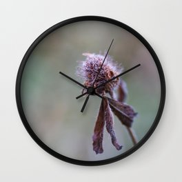 Frost on the Clover Wall Clock