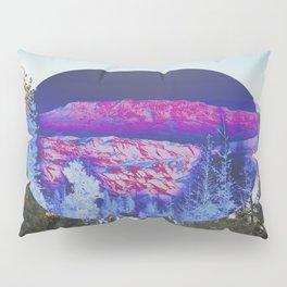Inverted Winter Pillow Sham