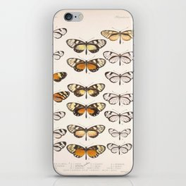 Vintage Scientific Hand Drawn Illustration Anatomy Of Butterfly Insect Patterns Biology Art iPhone Skin