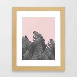 Blush Banana Leaves Dream #4 #tropical #decor #art #society6 Framed Art Print