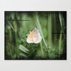 The Butterfly Of The Grass Canvas Print
