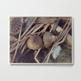 Still Life in Nature Metal Print