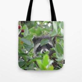 Raccoon at Wapato Par Tote Bag