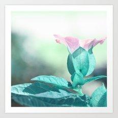 pastel flower Art Print